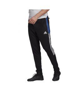 Shop adidas Performance Tiro 21 Track Pants Black Royale Blue at Studio 88 Online