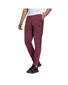 Shop adidas Performance Sereno Pants Mens Victory Crimson at Studio 88 Online
