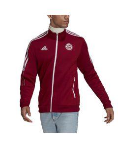 Shop adidas Performance F.C. Bayern Tiro Anthem Jacket Craft Red at Studio 88 Online